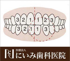 三重県四日市_にいみ歯科医院_噛み合わせ3